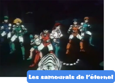 The ronin warriors